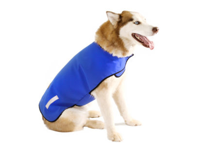 Insulated Dog Jacket