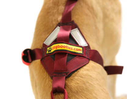 Saddle Back Harness