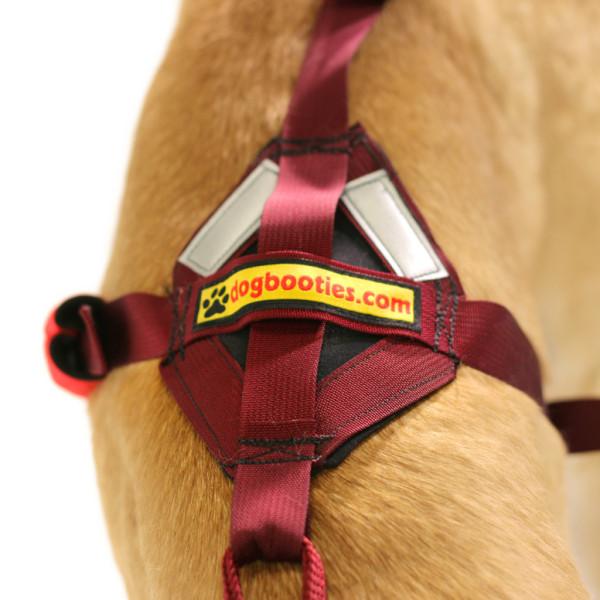 Saddle Back Harness